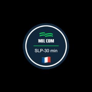 curso slp francés funcional
