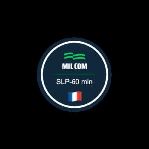 curso slp francés profesional
